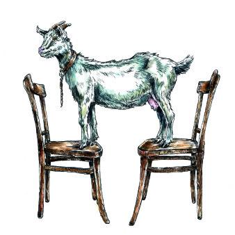 Kattenhorns Pferd 8 | Tusche & Aquarell | 30 x 20