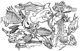 Tierchen 4 | Tusche | 10 x 15