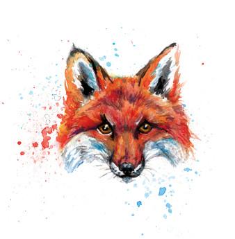 Fox 2 | Tusche und Aquarell | 5 x 5