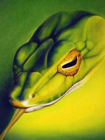 Schlange | Öl auf Pappe | 20 x 15