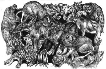 Tierchen 2 | Tusche | 10 x 15