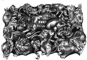 Tierchen 1| Tusche | 10 x 15